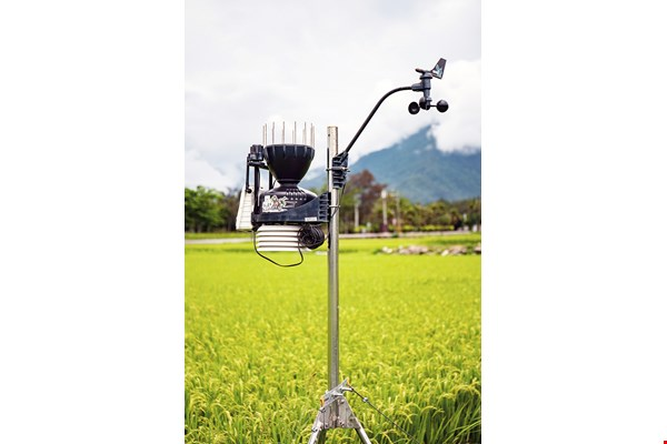 Data related to rice growth gathered by micro weather stations can be used to guide fertilizer application, irrigation, and measures to control pests and diseases.