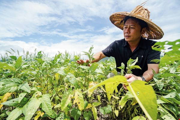 """Second-generation debtor"" Tseng Kuo-chi, who returned home to take over the family farm, got out of his financial difficulties with wet–dry crop rotation and economies of scale."
