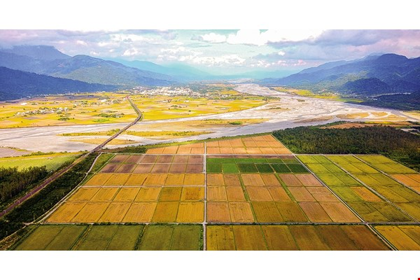 Tseng Kuo-chi has expanded organic farming through a cooperative model, creating the largest specialist zone in Taiwan for organic cultivation of beans and paddy rice. (courtesy of Dongfon Organic Farm)